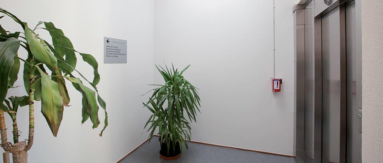 Bureaux Mairie au Palais sur Vienne (87)_24